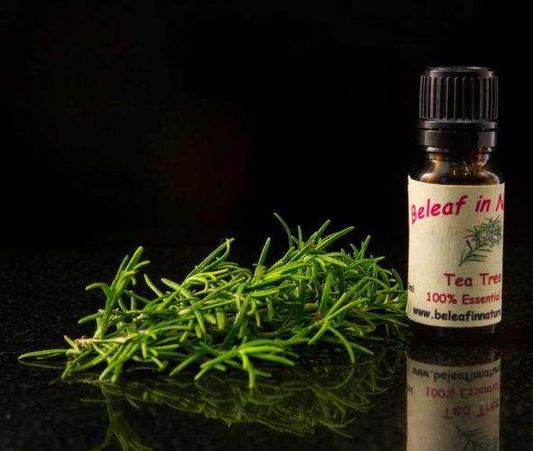 масло чайного дерева варианты
